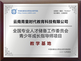 云南青童时代教育科技有限公司