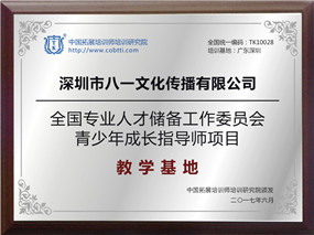 深圳市八一文化传播有限公司